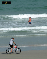 Picture of a man riding his bike on the beach, featuring a shore fisherman in the background. © 2011, FreePhotoCourse.com, all rights reserved.  Awesome beach pictures & wallpapers. Download free jpg, jpeg photos.