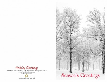 Thumbnail of half-fold Christmas Card; downloadable, printable; courtesy FreePhotocourse.com; (c) 2010, all rights reserved