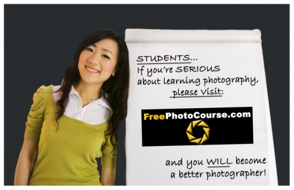 Web advertisement for FreePhotoCourse.com.  Free online digital photography lessons, professional photo tips, DSLR camera course, contributor's gallery, free jpg pictures and wallpapers, interviews with pro photographers and much more for the photography enthusiast!