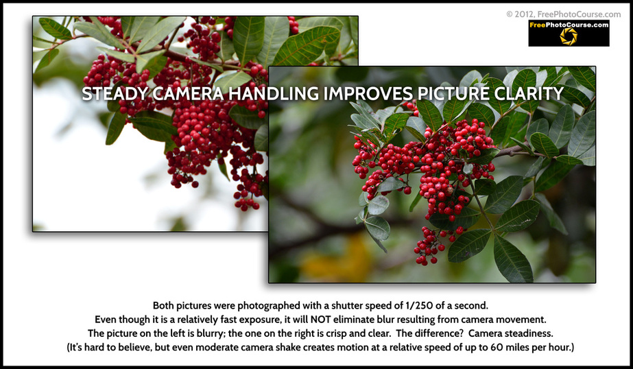 Photography Tips: comparison of steady vs shaky camera handling and resulting picture clarity.  Photography tips and tutorials from www.FreePhotoCourse.com. © 2012, FreePhotoCourse.com, all rights reserved.