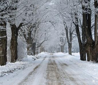 winter city lane with - photo #10