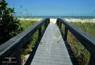 Picture of a crossover boardwalk to the beach and ocean.  Beautiful tropical summer image. © 2011, FreePhotoCourse.com, all rights reserved.  Awesome beach pictures & wallpapers. Download free jpg, jpeg photos.