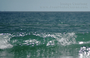 Picture of extremely clear water - ocean wave breaking near shore. Wallpapers courtesy www.FreePhotoCourse.com