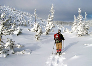 Picture of a cross-country skiier in Port-au-Port, Newfoundland.  Honorable Mention featured in FreePhotoCourse.com