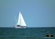 Beautiful picture of a sailboat on the blue ocean. © 2011, FreePhotoCourse.com, all rights reserved.  Awesome beach pictures & wallpapers. Download free jpg, jpeg photos.