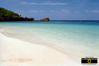 Picture of a pristine tropical beach.Download free pictures and wallpapers.  © 2011, FreePhotoCourse.com, all rights reserved.