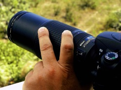 Picture of a pair of hands holding a DSLR camera with 300mm zoom lens. Image registered to FreePhotoCourse.com and copyrighted for use as icon for their 'Photographer Profiles' series. © 2011, FreePhotoCourse.com, all rights reserved.